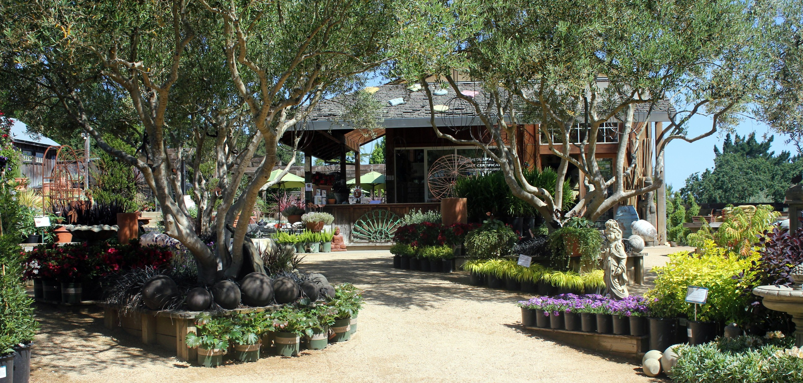 Cottage Gardens Of Petaluma